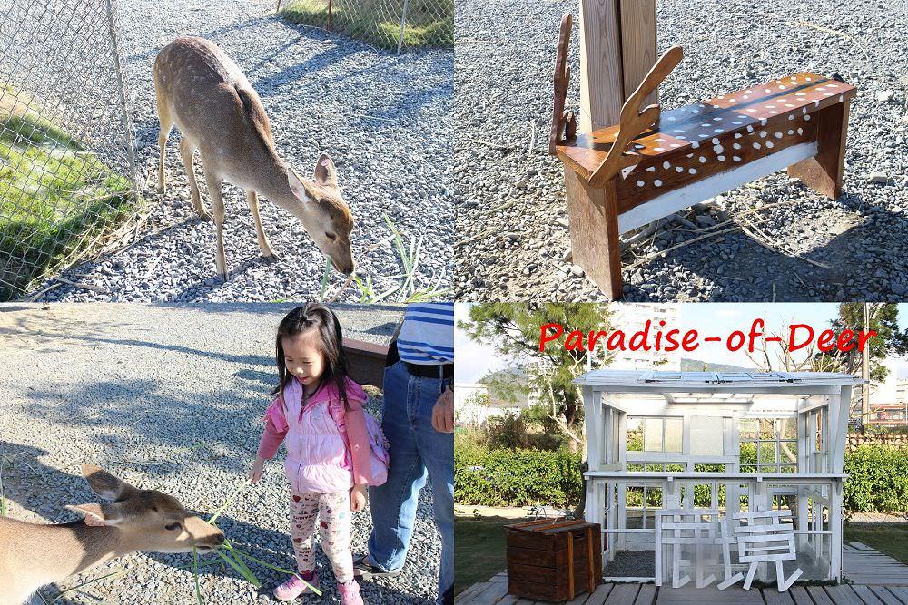 屏東墾丁親子景點︱鹿境梅花鹿生態園區:看小鹿不必到奈良,在墾丁就有被鹿包圍的感覺,內附被小鹿包圍影片