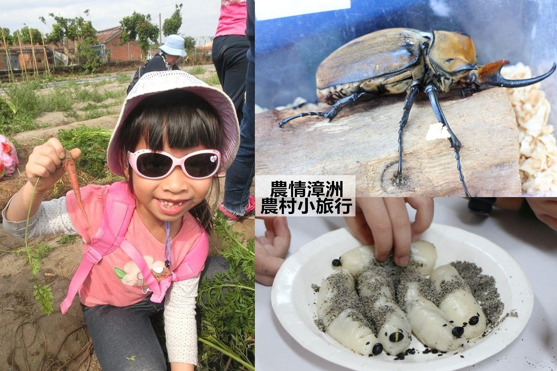 台南旅遊景點︱台南佳里漳洲一日遊:認識甲蟲、雞母蟲、拔無毒彩色蘿蔔、製作蝶豆花凍飲,到農情漳洲有理啦