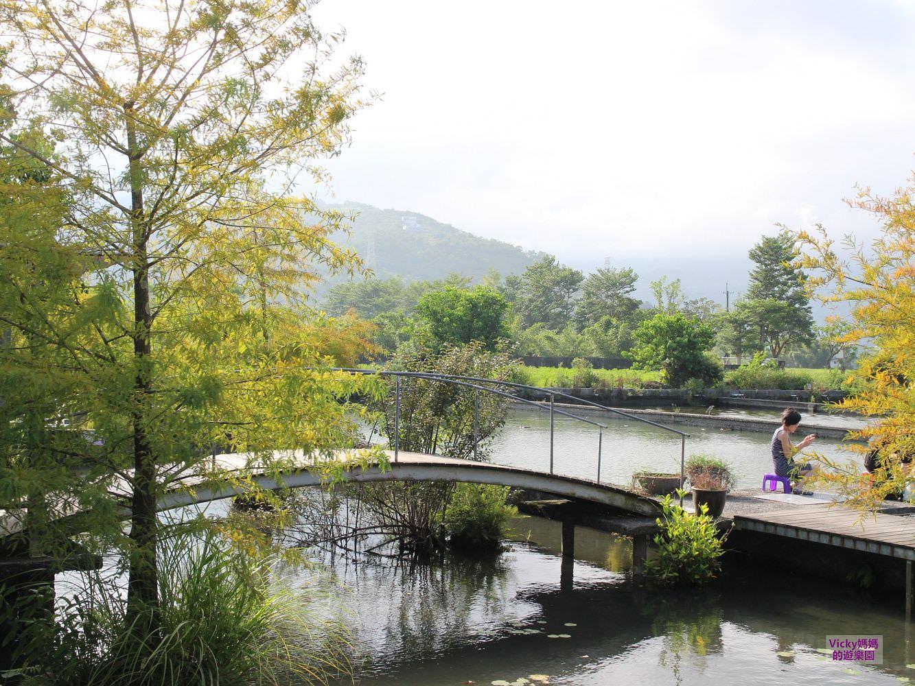 宜蘭旅遊景點︱親子景點︱勝洋水草休閒農場:魚塭上的遊戲場,DIY超吸睛生態瓶火山蝦,來這邊玩水和DIY就對啦