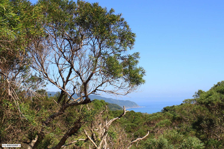 墾丁景點︱社頂自然公園:峽谷、豐富林相和珊瑚礁地形,超值得一遊的免門票景點