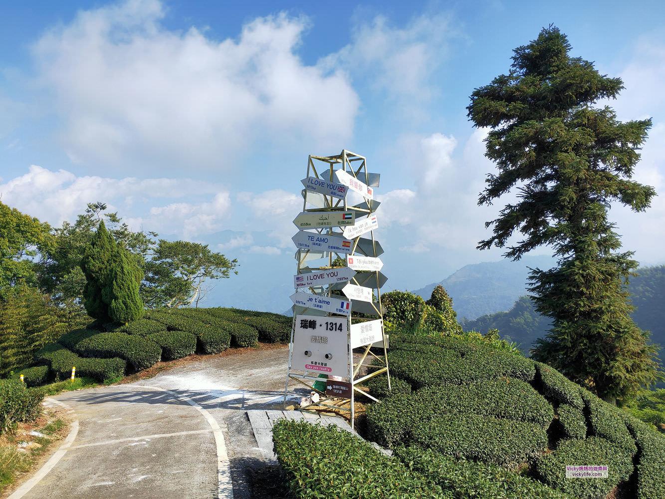 嘉義︱瑞里、瑞峰之旅:採茶、泡茶體驗,1314觀景台、雲潭瀑布、交力坪車站、美到屏息的太興岩步道