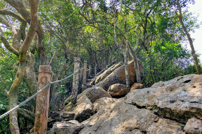台南親子登山步道︱龍麟山步道:巨石如龍鱗般綿延開來,大自然的鬼斧神工(文末有詳細路線圖)