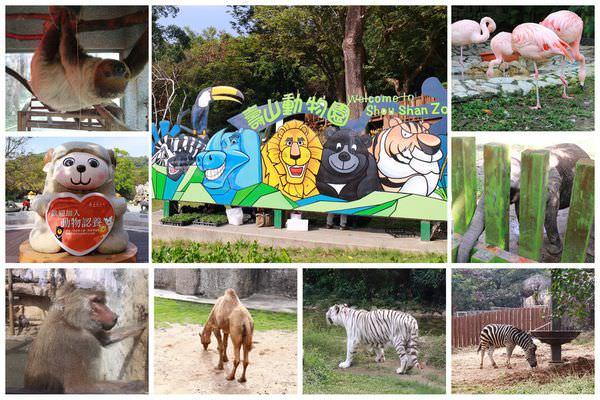 高雄景點︱高雄鼓山:壽山動物園,超佛心的入門票,只要銅板價