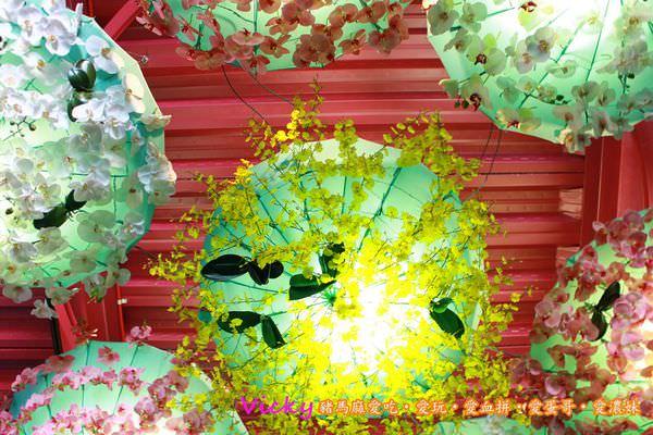 PhotoCap_097.jpg