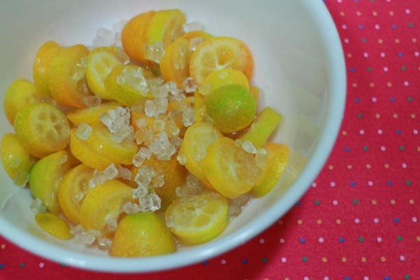 美麗廚房‧甜品-金棗(茶)X紫米桂圓X藍莓優格(2015-03)