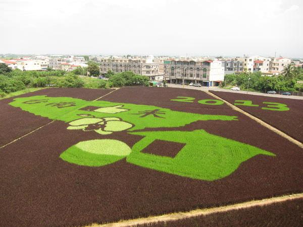 台南後壁~到後壁農會賞稻米彩繪/圖騰+後壁老火車站‧卡緊來喲‧慢來看不到