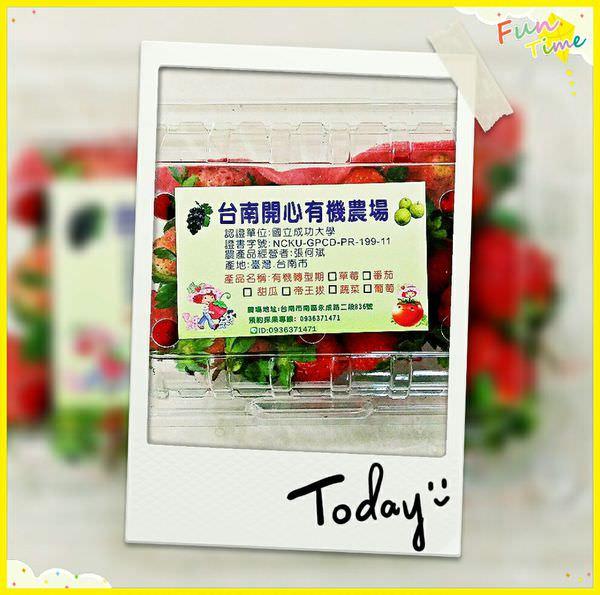 台南南區景點︱開心有機農場:市區有機草莓園,放心讓孩子享受摘採的樂趣